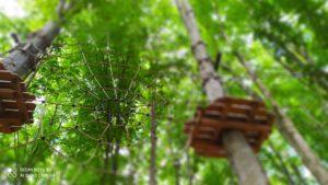 Ragnatela spiderpark